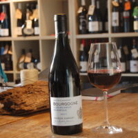 Chanzy Bourgogne Clos Michaud Pinot Noir 2017